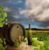 Leben des weißen Weins noch mit Weinberg Stockbild