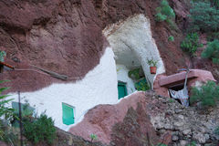 Leben in einem Felsen Stockbilder