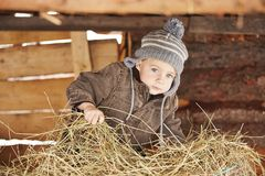 Leben im Bauernhof Stockbild