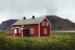 Leben in Lofoten-Inseln Stockfotografie