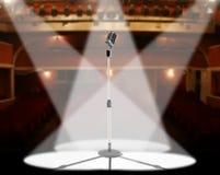 Leben Sie im Konzert Stockfotografie