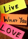 Leben Sie, was Sie lieben! Stockbild