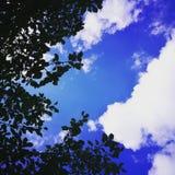 Leben unter Apfelbaum lizenzfreies stockbild