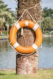 Lebenboje, die in der Nähe an Baum den See, zur Sicherheit hängt und Lizenzfreie Stockfotografie