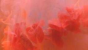Lebendes korallenrotes flüssiges abstraktes Flecke inw ater schlagen die stumpfen Wolken der Blume ein stock video