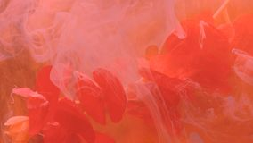 Lebendes korallenrotes flüssiges abstraktes Flecke inw ater schlagen die stumpfen Wolken der Blume ein stock footage