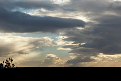 Lebens- Addo Landscape Stockfotos