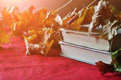 Lebens- alte Bücher des Weinleseherbstes noch auf dem Tisch nahe trockenen Ahornblättern Lizenzfreie Stockfotografie