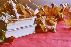 Lebens- alte Bücher des Weinleseherbstes noch auf dem Tisch nahe trockenen Ahornblättern Stockbilder