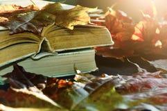 Lebens- alte Bücher des Weinleseherbstes noch auf dem Tisch nahe trockenen Ahornblättern Lizenzfreies Stockbild