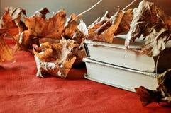 Lebens- alte Bücher des Weinleseherbstes noch auf dem Tisch nahe trockenen Ahornblättern Lizenzfreie Stockfotos