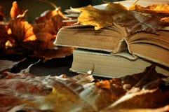 Lebens- alte Bücher des Weinleseherbstes noch auf dem Tisch nahe trockenen Ahornblättern Stockfotos