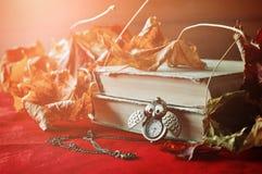 Lebens- alte Bücher des Weinleseherbstes noch mit Uhren nähern sich trockenen Ahornblättern Stockfotos