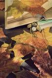 Lebens- alte Bücher des Weinleseherbstes noch mit Uhren nähern sich trockenen Ahornblättern Lizenzfreie Stockfotografie