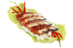 Lebensmittel auf dem Salatblatt. Fischgericht mit dem gekochten Reis, an ausgebreitet Lizenzfreie Stockbilder