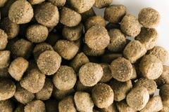 Lebensmittel Bio für Hund lizenzfreies stockbild