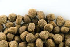 Lebensmittel Bio für Hund stockbilder