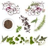 Lebensmittel-Hintergrund-Sammlungs-Zwiebel-Kraut-Pfefferkörner Stockfotos