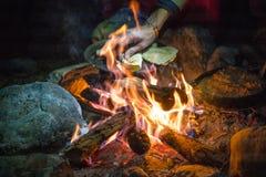Lebensmittel im Wald auf Feuer, gesundes Kampieren ausführlich stockfoto