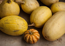 Lebensmittel am Markt des Landwirts lizenzfreie stockbilder