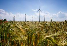 Lebensmittel und grüne Energie Stockbild