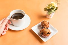 Lebensmittelbananenkleiner kuchen des schwarzen Kaffees und des Insekts Lizenzfreie Stockfotos