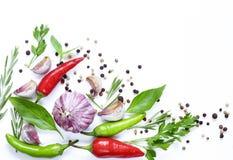 Lebensmittelhintergrund, -kräuter und -gewürze stockfoto