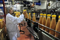 Lebensmittelindustrie Lizenzfreie Stockfotos