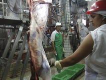 Lebensmittelindustrie Stockfoto