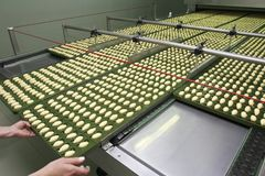 Lebensmittelindustrie neue 7 Stockfoto