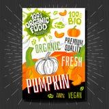 Lebensmittelkennzeichnungsaufkleber stellten bunte Skizzenartfrüchte, Gewürzgemüse-Verpackungsgestaltung ein Kürbis Gemüseaufkleb lizenzfreie stockbilder