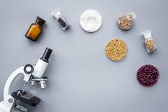 Lebensmittelsicherheit Weizen, Reis und rote Bohnen nahe Mikroskop auf grauem copyspace Draufsicht des Hintergrundes stockbild