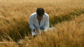 Lebensmittelwissenschaftler, der Ernten überprüft stock footage