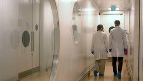 Lebensmittelwissenschaftler, die im Labor zusammenarbeiten stock video footage