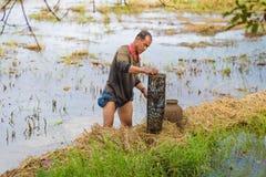 Lebensstilslandwirt Thailand thailändische Landwirte sind Fischfalle in den Reisfeldern lizenzfreie stockfotografie