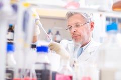 Lebenwissenschaftler, der im Labor erforscht Stockfotos