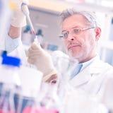 Lebenwissenschaftler, der im Labor erforscht Stockbild