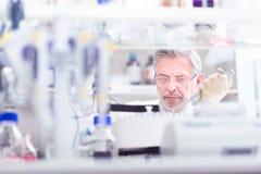 Lebenwissenschaftler, der im Labor erforscht Stockbilder