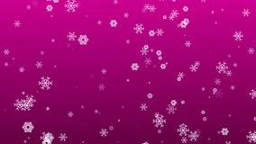Lebhafte Schneeflocken, die auf magentaroten Hintergrund fallen stock video