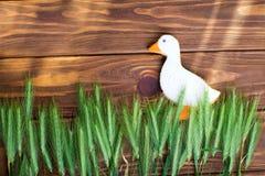 Lebkuchenplätzchen formten Ente mit dem Ohr des Weizens auf einem hölzernen Hintergrund Flache Schärfentiefe Stockfotos