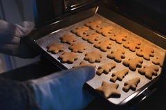Lebkuchenplätzchen frisch aus dem Ofen heraus lizenzfreie stockfotografie