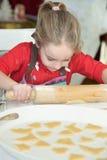 Lebkuchenplätzchen und aromatische Gewürze lizenzfreie stockfotografie