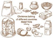 Lebkuchenplätzchen und aromatische Gewürze bestandteile Panetton Italien lizenzfreie stockfotografie