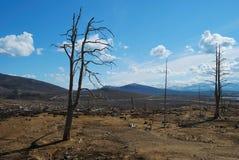 Lebloses Land Stockfotos