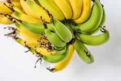 Lebmuernang banan Obrazy Stock