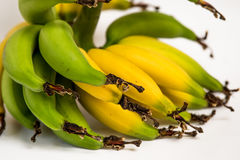 Lebmuernang banan Fotografia Stock