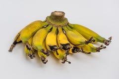 Lebmuernang banana Stock Photo