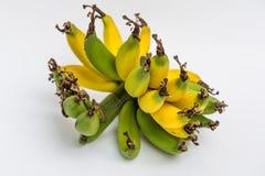 Lebmuernang banana Royalty Free Stock Photos