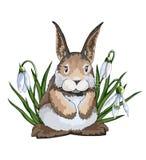 Lebre ou coelho criativo liso de intervalo mínimo tirado mão da Páscoa dos desenhos animados do vetor ilustração stock