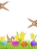 Lebres de Easter Fotos de Stock